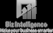 Logo of BIZ Intelligence S.A.R.L.